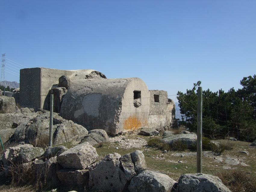 Bunkerespinar