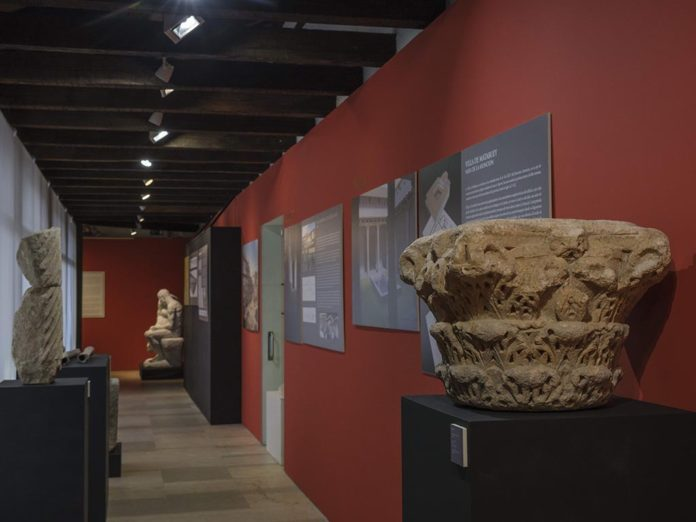 Guided visits to the exhibition 'Images of Antiquity'