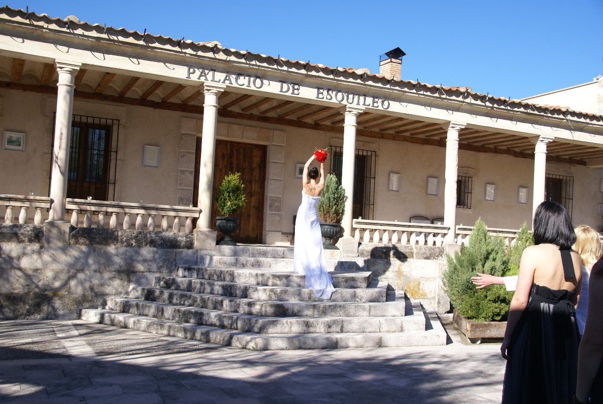 4 Shear Palace