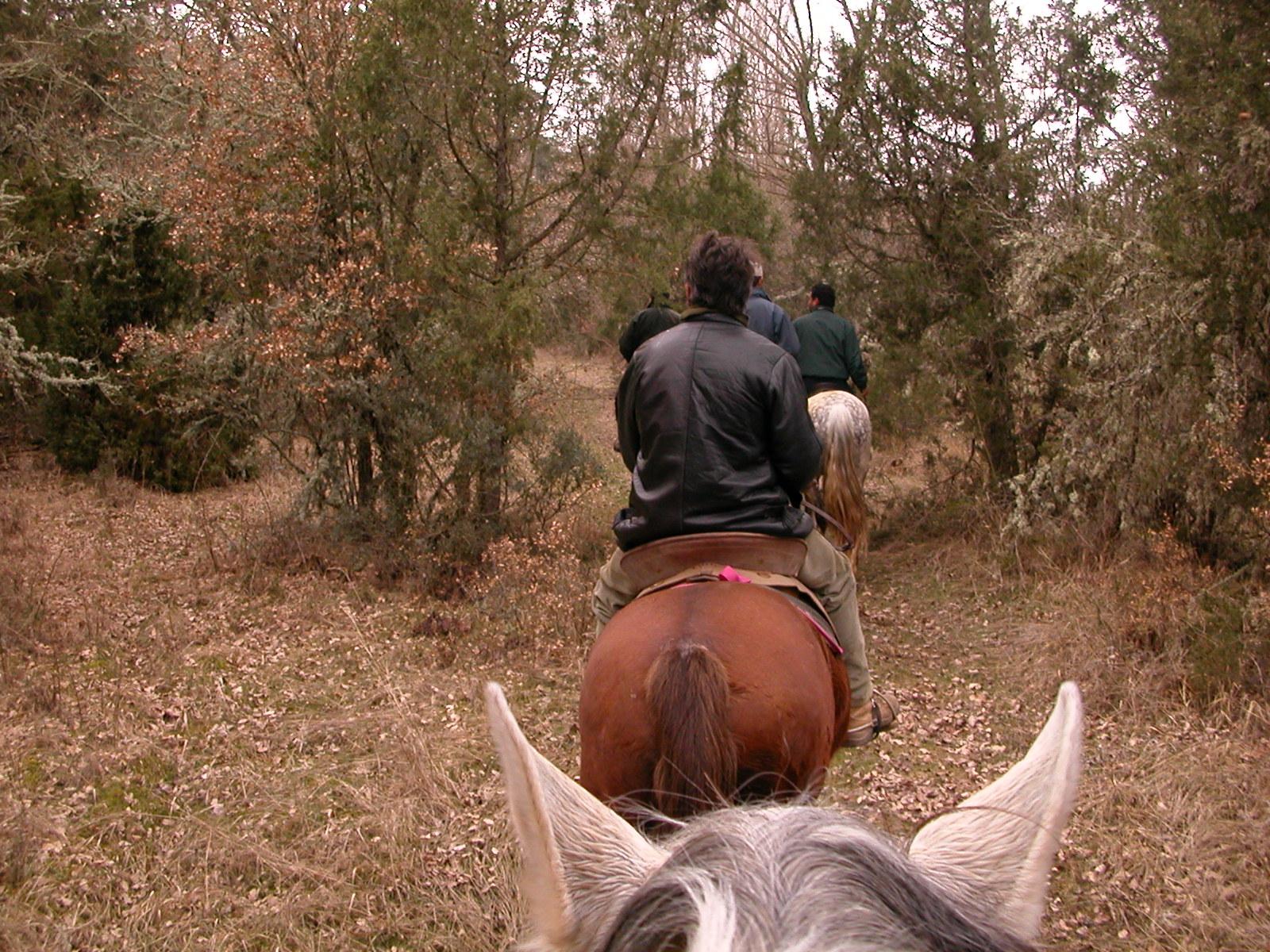 The 3 Grajera Horse Riding