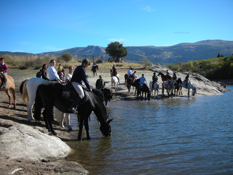 Horseshoe Herranz 2