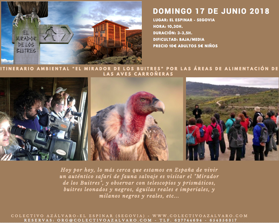 Environmental itinerary to the Mirador de los Buitres