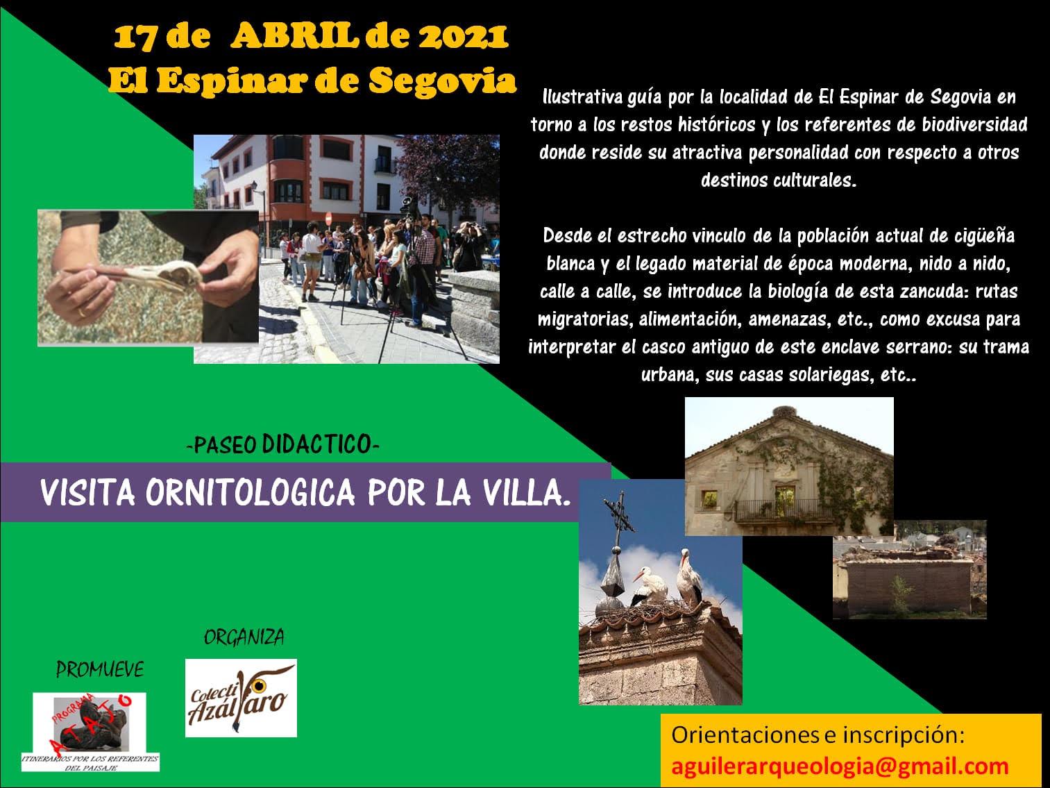 Ornithological visit to El Espinar