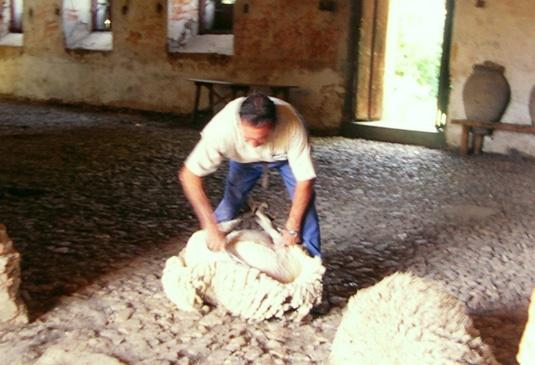 Real Sawmill