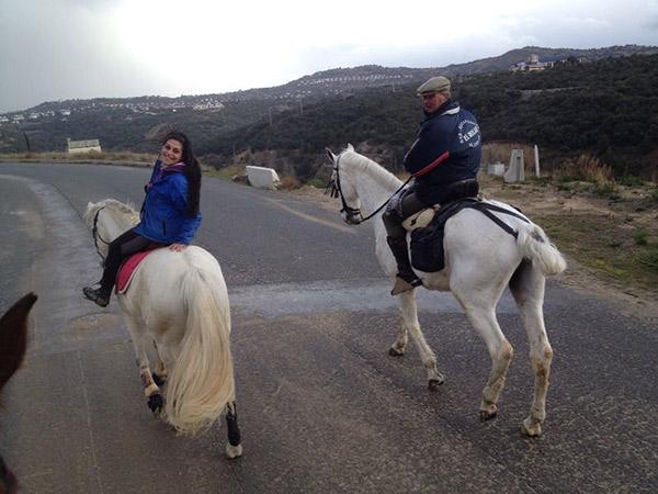 cheval à bascule 2