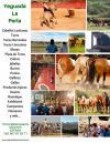 3.-Yeguada-La-Perla --- Visits-Guided --- Bulls-and-Horses. Indice.jpg